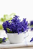Blue hyacinths in an enamel cup