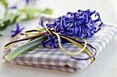 A blue hyacinth on a napkin as a place decoration
