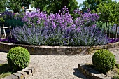 A gravel path leading to flowerbed with a stone wall
