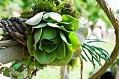 A flower arrangement with a cactus