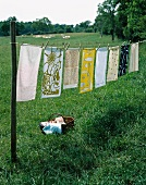 Tablecloths drying on a washing line in the garden