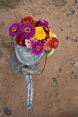 Colourful summer flowers in a watering can (overhead view)