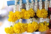 Flower garlands for good luck (Thailand)