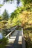 Van Dusen botanical gardens in Vancouver