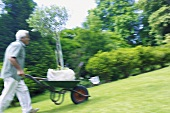 A man pushing a wheelbarrow in a garden