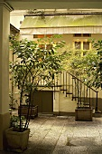 A courtyard with plants and a flight of stairs