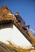 A thatched roof being repaired