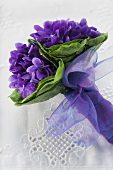 Bunch of violets with purple bow