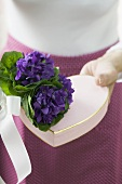Bunch of violets with heart-shaped gift box