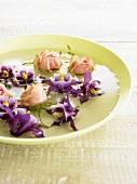 Schwimmende Blüten: Akelei und Rosen