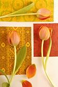 Einzelne Tulpen