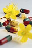 Johanniskraut-Tabletten und Blüten