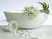 Valerian and sugar-coated valerian tablets