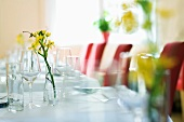Laid table with glasses and flowers in a restaurant