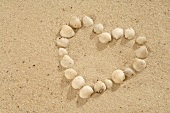 Sea shells forming a heart in sand