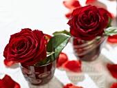 Zwei rote Rosen in roten Gläsern