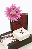 Geschenke mit asiatischem Geschenkpapier