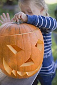 Small girl putting lid on pumpkin lantern