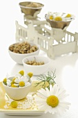 Chamomile flowers, fresh, dried and globuli, with scales