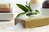 Bar of soap with herbal leaf