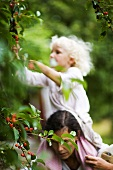 Mother and daughter picking cherries