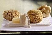 Sponges on towel, close-up