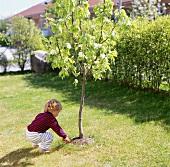 Little boy planting a tree in a garden