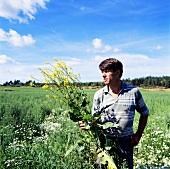 Man standing in field, holding an oilseed rape plant