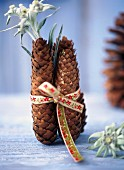 Pine cones and edelweiss flowers tied with a ribbon