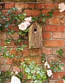 A birdhouse on a weathered brick wall with flowering climbing roses
