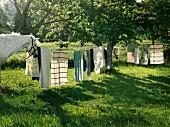 Washing on a clothesline and two horses in a garden