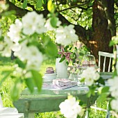 Set table below blossoming apple tree