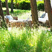 Idyllic seating area under trees with wicker furniture in summery garden