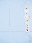 The word 'Noel' hung on a string against a white background