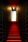 Narrow stairway with dramatic light with black tiled walls and red stairs