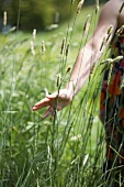 A girl in a field of long grass