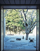 View through an open terrace door of a gnarled tree in a designed courtyard