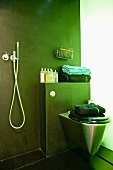 A stainless steel toilet against a green wall with bathing utensils next to a hand-held shower