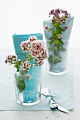Flowering oregano in glasses as table decoration