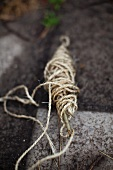A roll of twine in a garden
