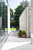 Paved path around modern, concrete pavilion and view into garden