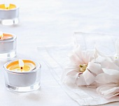Pale Pink Magnolia Blossoms on White Napkins with Tea Lights