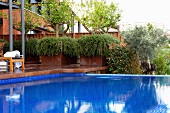 Terrace and view of garden beyond pool with bright blue tiles