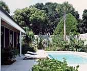 Sun loungers next to pool in front of bungalow and exotic garden plants