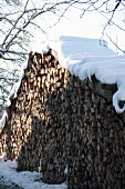 Snow-covered woodpile in a winter landscape