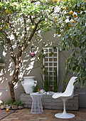 White shell chair and lemon tree on terrace next to house