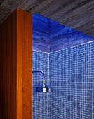 Blick in eine Dusche mit blauen Fliesen