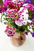 Posy of Sweet William in vase