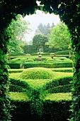 Blick durch Öffnung in Hecke auf Gartenanlage mit in Form geschnittenen Hecken, ein Beispiel für Gartenarchitektur.
