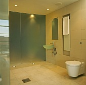 Spacious, minimalist bathroom with glass partition